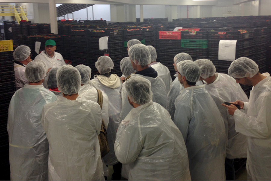Grufesa descubre a los estudiantes de Geografía y Gestión del Territorio el cultivo de la fresa