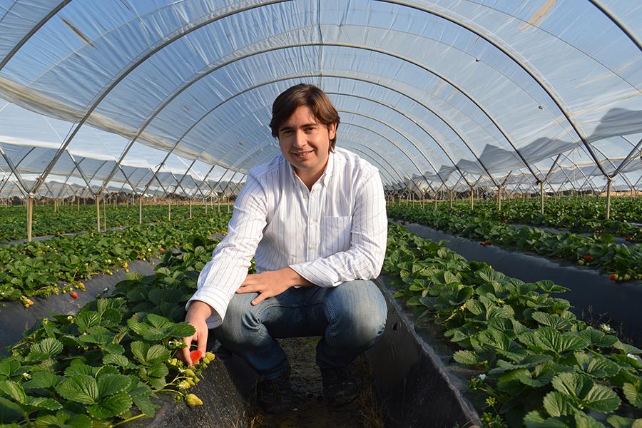 """Juan José Valls: """"Nuestros clientes nos identifican claramente con ese gen de innovación y sostenibilidad"""""""