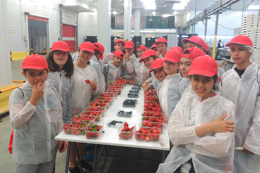 300 students from Moguer and Mazagón appreciate the effort and sacrifice that goes into the sector in a visit to the Grufesa facilities