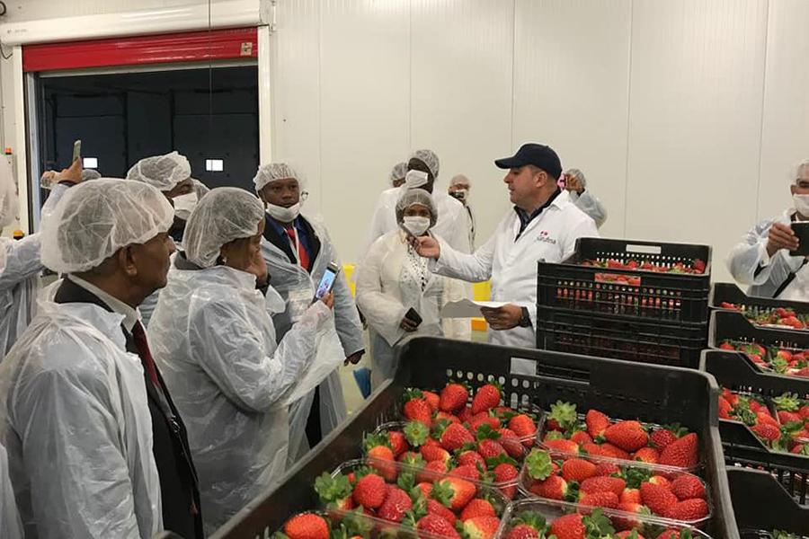 Representantes municipales dominicanos visitan Grufesa para interesarse por su modelo de gestión y exportarlo como dinamizador del desarrollo local