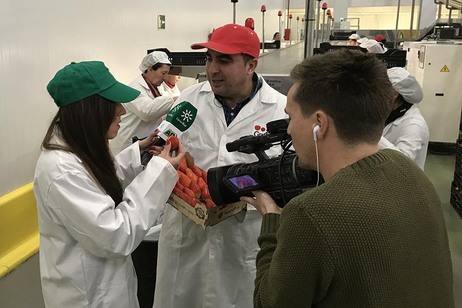 Andalucía Directo visita Grufesa para conocer cómo va la campaña